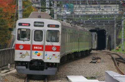 (´・ω・`)赤ショボーン玉電車