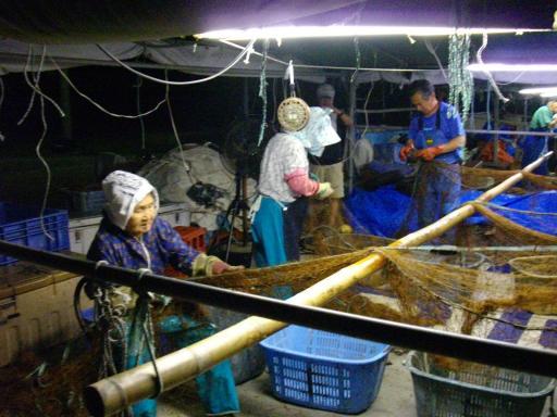 漁師の仕事
