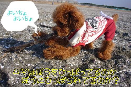 2009_0119_141404-P1010653.jpg