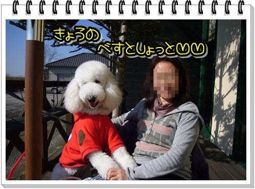 2009_0202_125055-P1010940.jpg