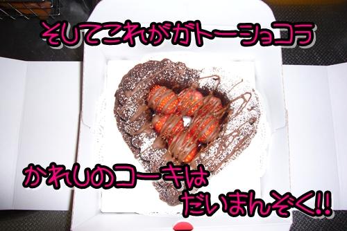 2009_0215_212246-P1020090.jpg