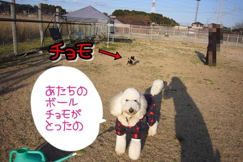 2009_0218_162542-P1020107.jpg