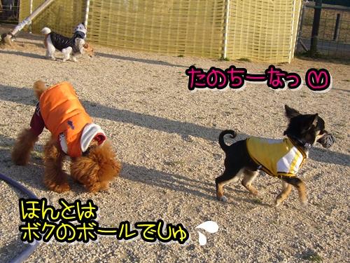 2009_0218_162657-P1020111.jpg