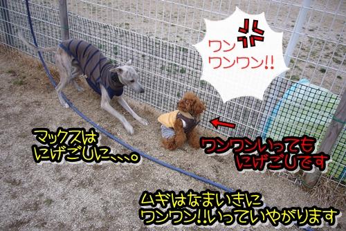 2009_0222_165843-P1020138.jpg