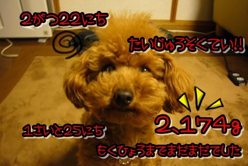 2009_0222_223159-P1020144.jpg