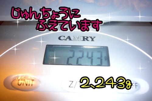 2009_0318_004122-P1020244.jpg