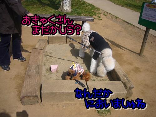 2009_0318_133152-P1020264.jpg