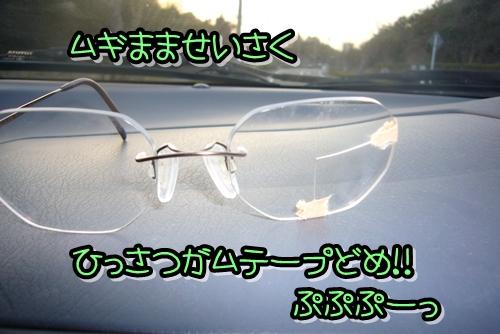 2009_0318_173812-P1020306.jpg