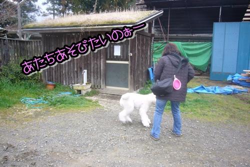 2009_0322_093913-P1020311.jpg