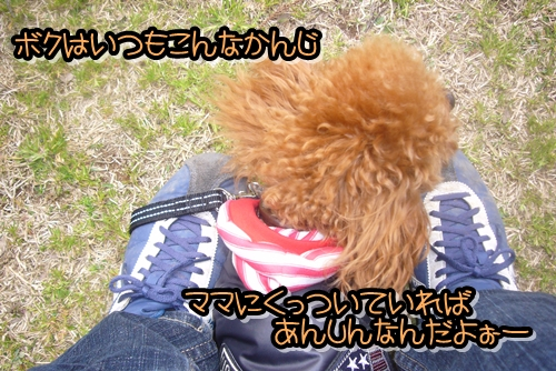 2009_0322_115607-P1020330.jpg