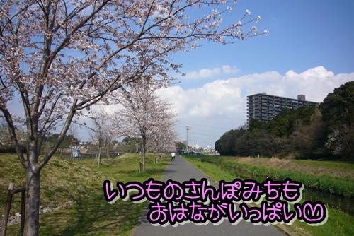 2009_0406_144036-P1020457.jpg