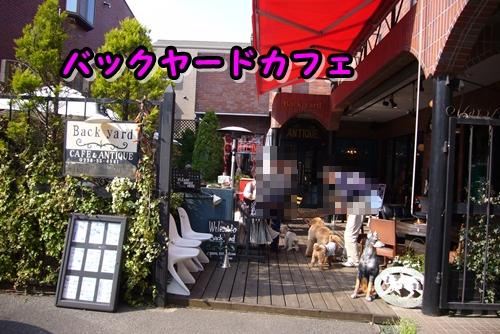 2009_0407_150653-P1020484.jpg