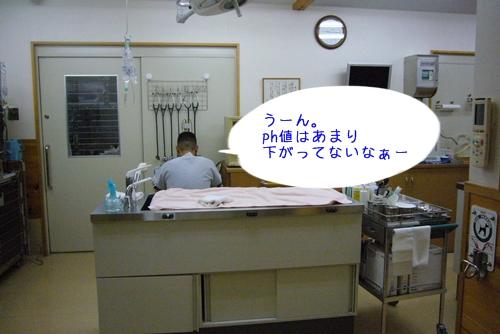 2009_0611_093850-P1030035.jpg