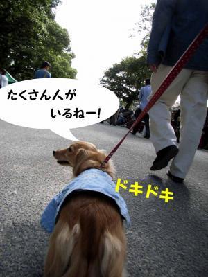 08/10/12②