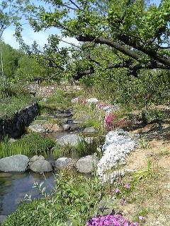 20070429-5.jpg
