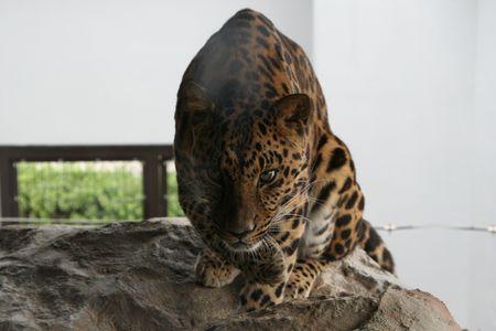 20111002_福山市立動物園03