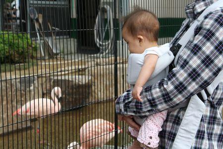 20111002_福山市立動物園05