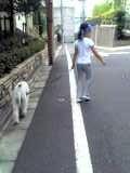 はなと散歩