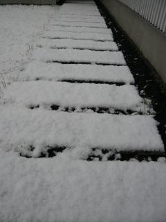 冬本番ですね♪