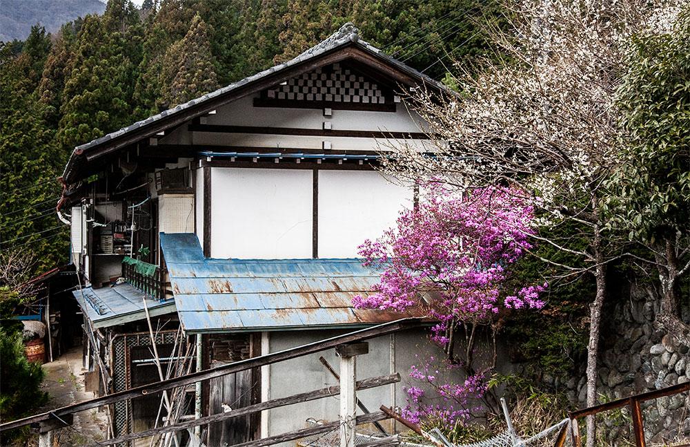 060416chichibu02.jpg