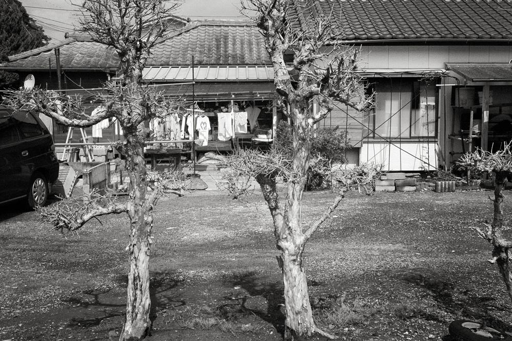111009katsuura22.jpg
