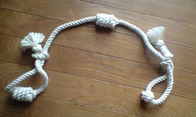 090818犬のロープ