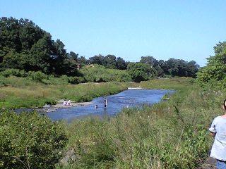 090920阿須の公園川にいた人
