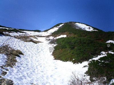 雪の道。。