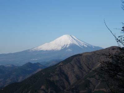 08_0103_ooyama3.jpg