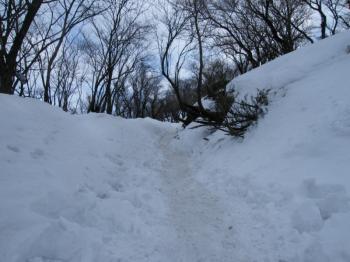 踏み固められた登山道
