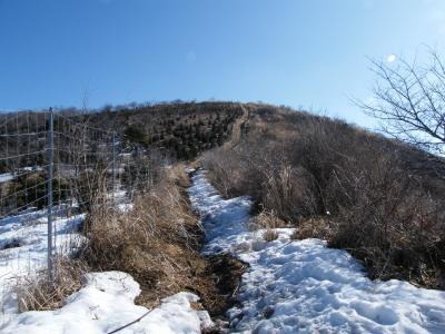 平尾山へ。。