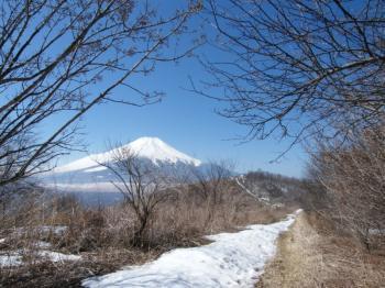 再び太平山へ。。