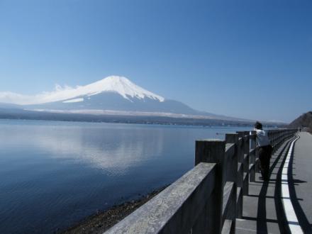 山中湖沿いの道