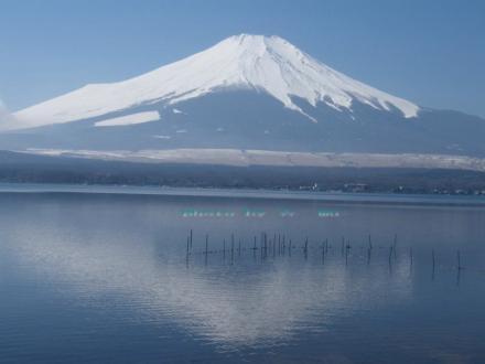 湖面に映る富士