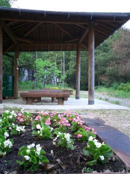 三井山にある花壇