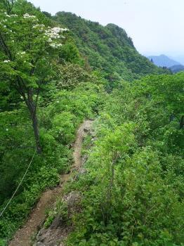 仏果山 登山道2