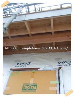 011_convert_20090623215619.jpg