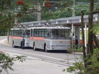 CIMG1059トロリーバス