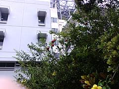 200905270900.jpg