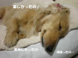 熟睡0221