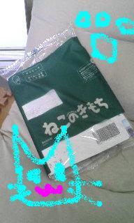 20080806165936.jpg