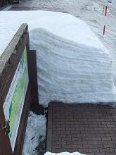 080310堅雪を歩く002