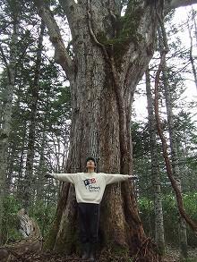 081115ハルニレの巨木