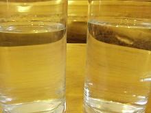 090411シラカバ樹液