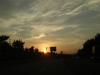 2008_0925画像0419