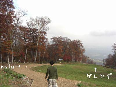 2008_10200231.jpg