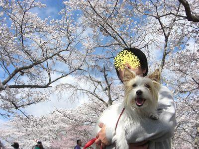 2009_0415画像0222