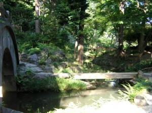 DSCN3808 小石川後楽園