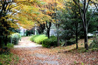 県活秋2008-4