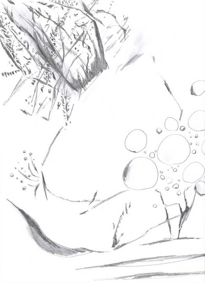 rakugaki (8)